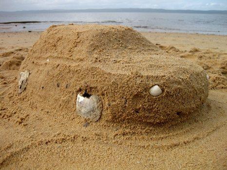Our sand car
