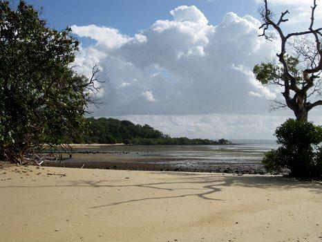 North side of Coochie Mudlo Island